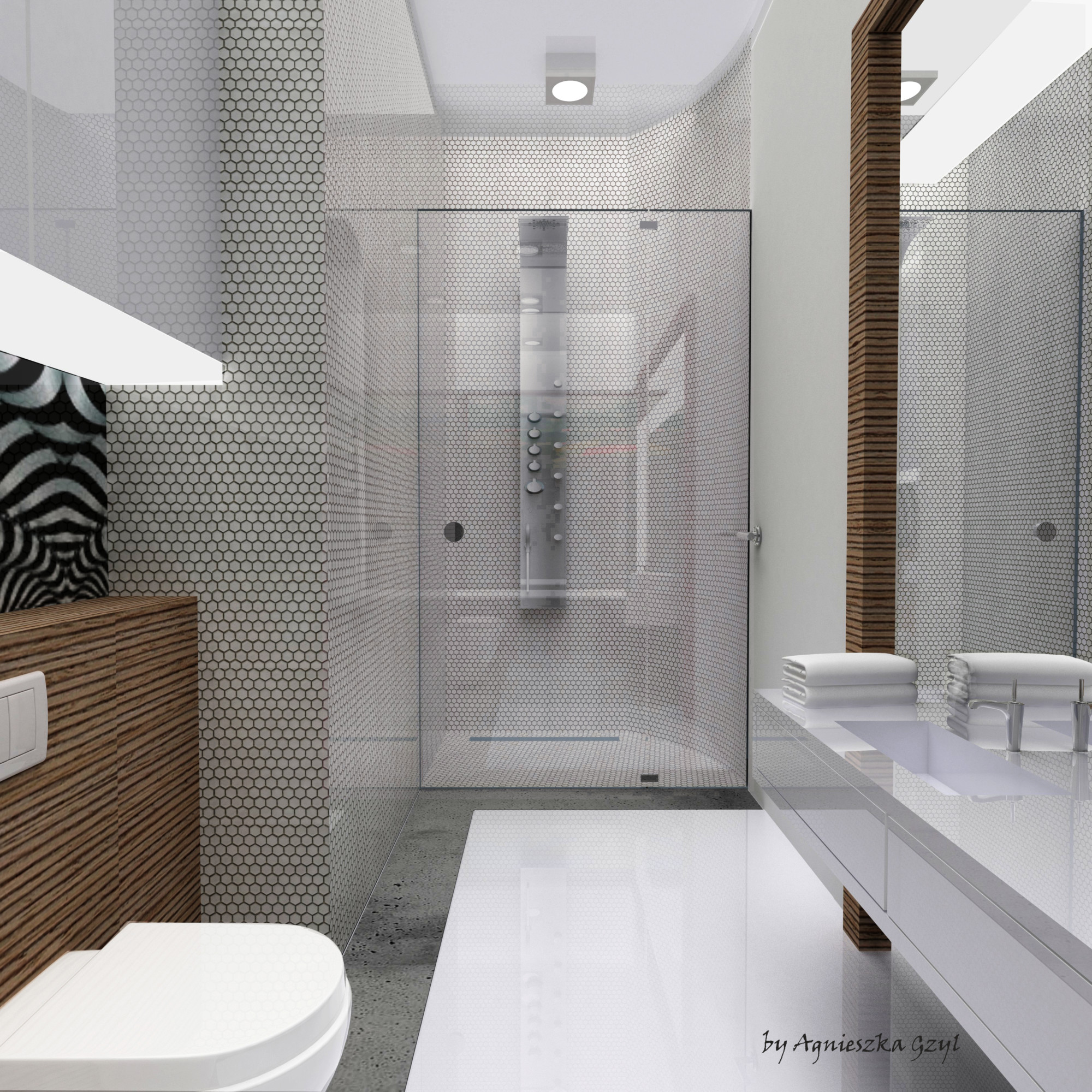 MASTER BEDROOM BATHROOM– PRIZE HOUSE IN THE POLISH VERSION ...
