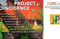 Project Coincidence exhibitions in Budapest and my artworks with E.Gąsienica-Setlak